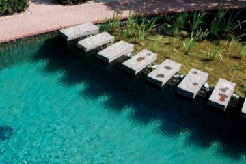 Zwemvijver aanleggen in uw tuin