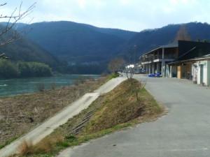 Momotaro Koi Vijvercentrum Scheper