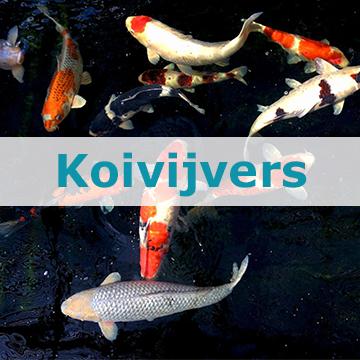 Koivijvers