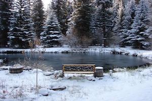 Wintertips voor de vijver