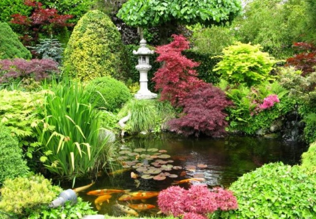 Japanse tuin aanleggen vijvercentrum de scheper for Koivijver aanleggen tips